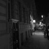 Die Muse(en) von Berlin